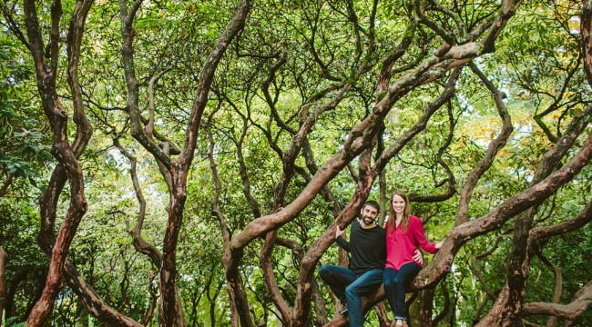 Crystal Springs Rhododendron Garden Engagement Photos