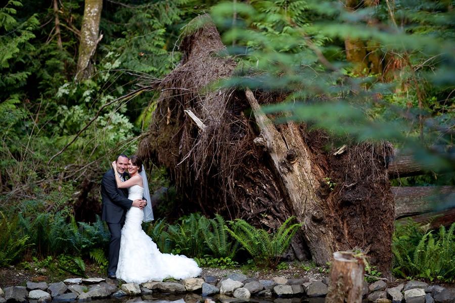 Portland Wedding Photographer, Napa Wedding Photographer