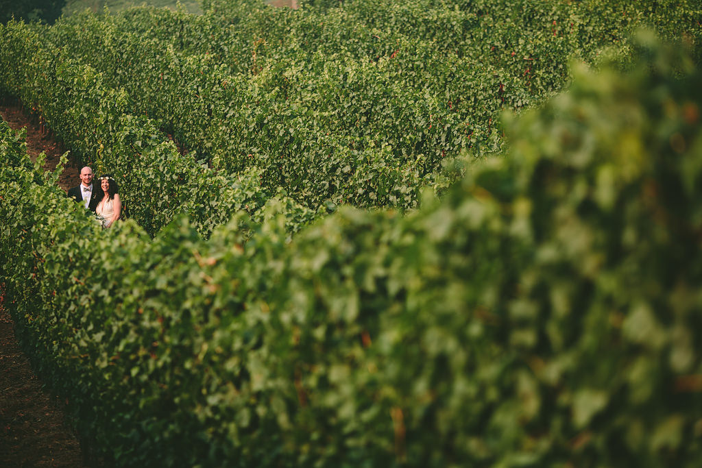 Alexana Winery, Alexana Winery Wedding Photos, Northwest Wedding Photographer